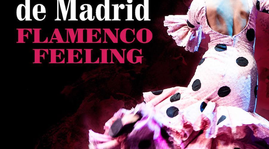 Flamenco Feeling em Braga