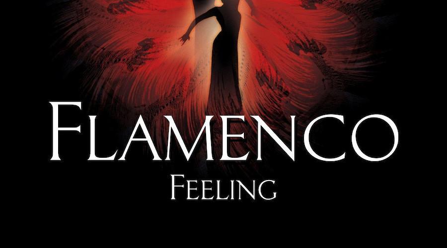 Flamenco Feeling em Ílhavo