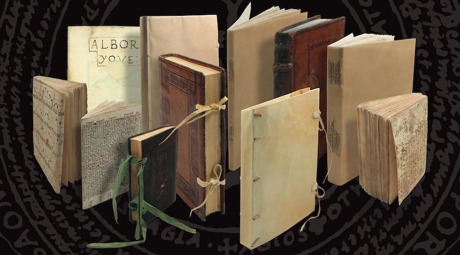 La Biblioteca de Barcarrota. 25 años de un hallazgo