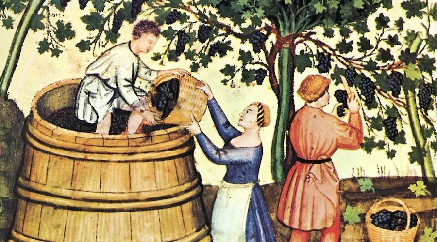 La Trova: Amargas vides, alegres vinos em Alcobaça