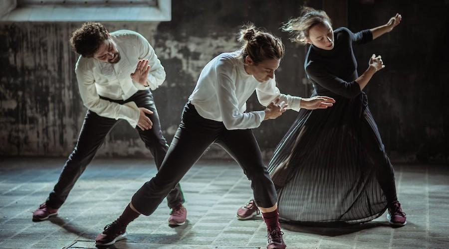 29ª Quinzena de Dança de Almada. Mostra de Videodança